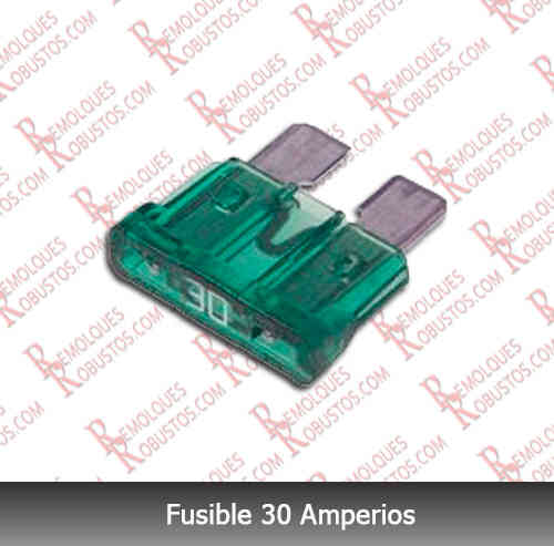Fusible 30 Amperios